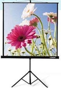Экраны проекционные